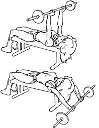 Bench and Barbell workout fullbody - JLD FitnessJLD Fitness | 197 x 255 png 34kB